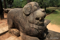 Lion, Council Chamber, Polonnaruwa