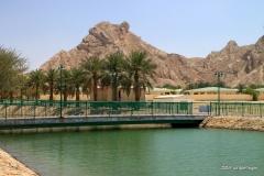 Al Ain hot springs and lake
