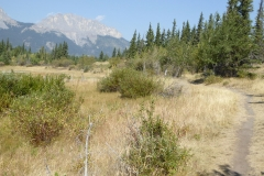 Middle Lake trail, Bow Valley Provincial Park