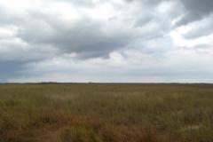 Storm Clouds, Everglades National Park