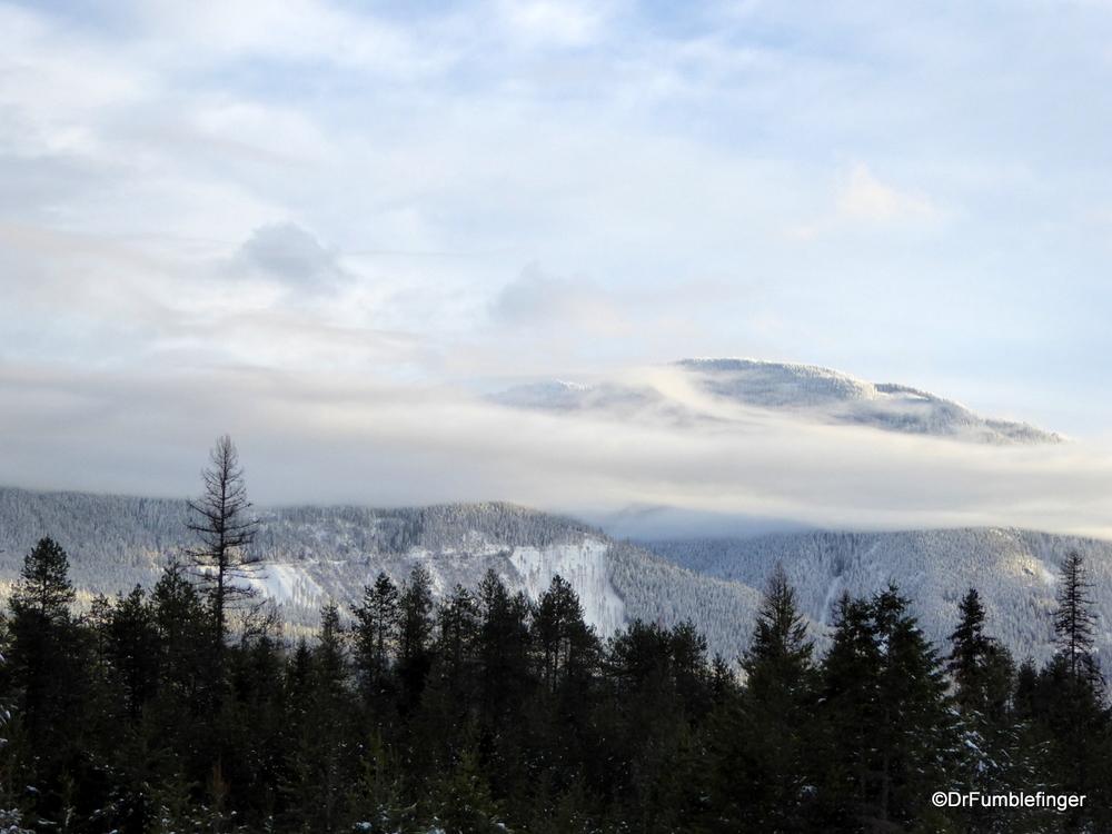Fresh Snow in northern Idaho