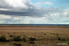 Grazing land near Puerto Natales