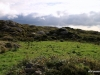 Scenery, Ring of Kerry