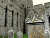Cashel Cemetery and Cathedral