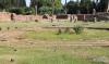 Sunken garden on Palatine Hill