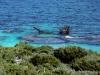 Shipwreck, Rottnest Island, Australia