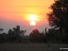 Sandibe Sunset