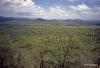 View from Serengeti Serena Lodge
