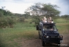 On Safari, Serengeti National Park