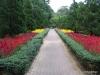 Singapore Zoo -- gardens