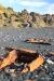 Shipwreck at Djupalonssandur