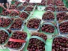 Bing cherries, St. Catharines Market