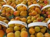 Apricots, St. Catharines Market