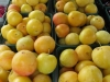 Plums, St. Catharines Market