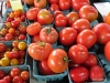 Tomatoes, St. Catharines Market