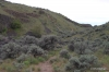 Steamboat Rock -- trail at top