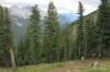 Trail near summit of Sulphur Mountain