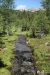 Creek, Garden Path Trail
