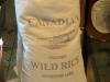 Wild Rice harvested in Manitoba