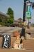 Tupelo, Downtown exhibits