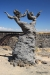 Statue on rim of Snake River Canyon