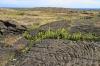 volcanoes-national-park-2011-039