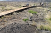 volcanoes-national-park-2011-042