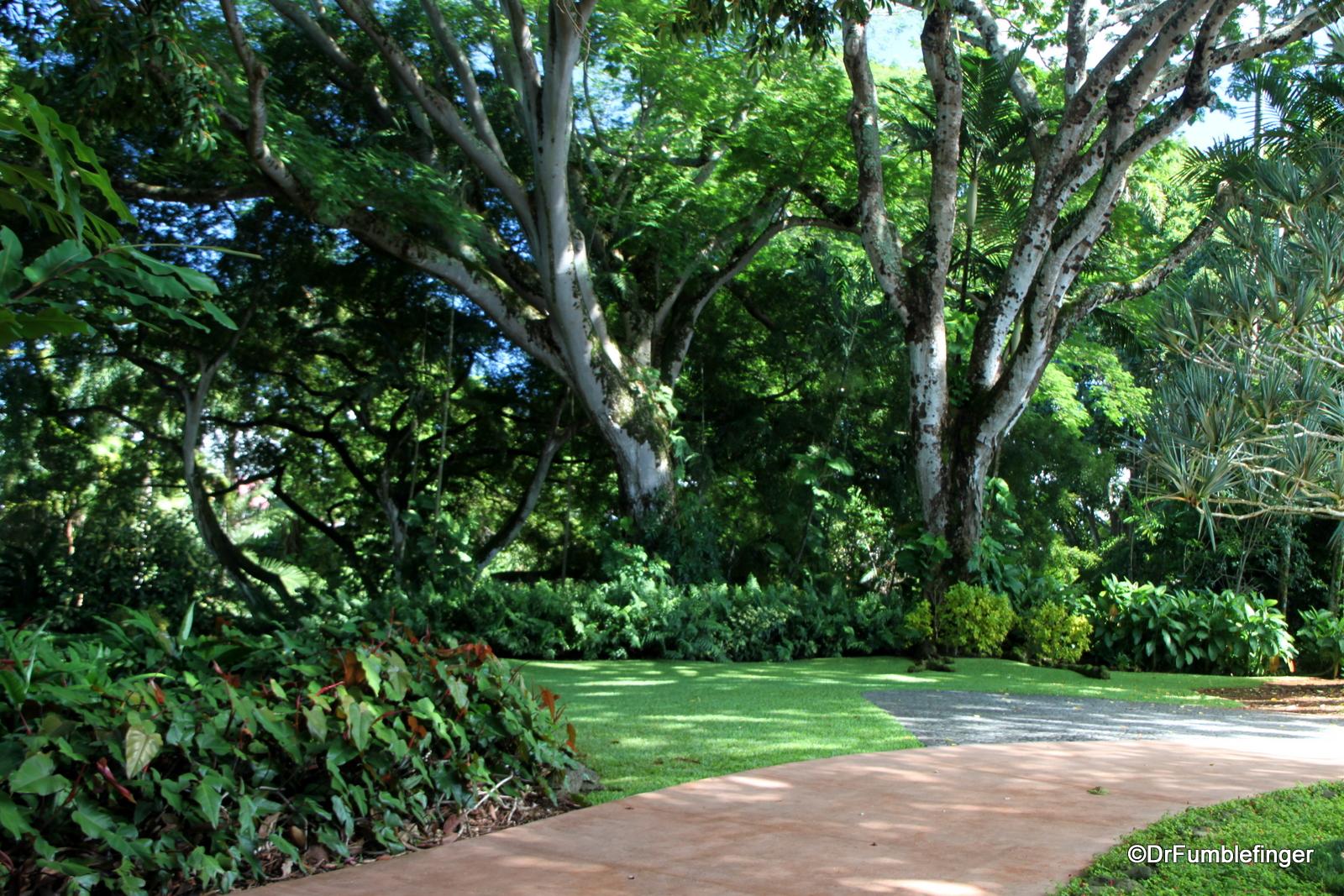 Entrance, Wahiawa Botanical Garden, Oahu