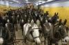 33 mule combine team, Walla Walla Museum