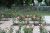 Rose Garden, Pioneer Park