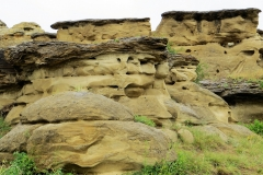 Battlescene Trail, Writing on Stone Provincial Park