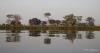 Reflections of the Okavango Delta