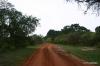 Yala National Park -- Entrance road