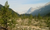 Yoho Valley, viewed from trailhead
