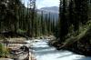 Little Yoho River, downriver of falls