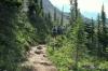 Whaleback trail