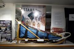 Yukon Transporation Museum, Whitehorse.  Dog sled