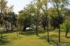 grounds of Royal Livingstone Hotel