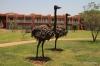 Zambian Sun Hotel