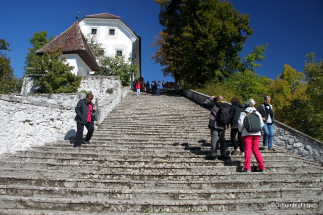 99 stairs lead to the top of Bled Island