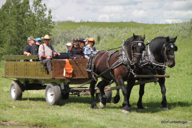 A wagon shuttles you from the visitor center to the ranch